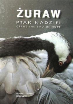 Żuraw ptak nadziei