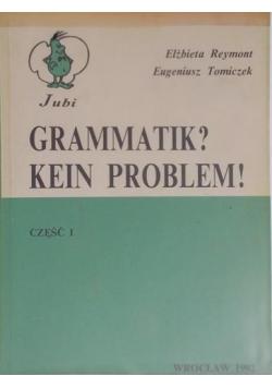 Gramatik Kein Problem!