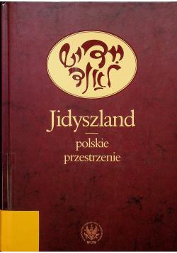 Jidyszland polskie przestrzenie