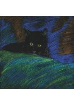 Notes. Kot tajemniczy