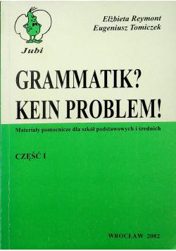 Gramatik Kein Problem cz 1
