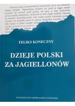 Dzieje Polski za Jagiellonów, reprint z 1903 r.
