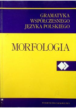 Gramatyka współczesnego języka polskiego Morfologia Tom II