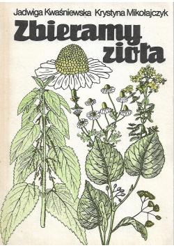 Zbieramy zioła