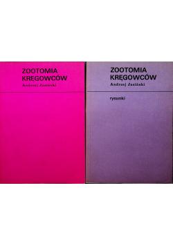 Zootomia kręgowców 2 książki
