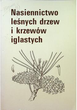 Nasiennictwo leśnych drzew i krzewów iglastych