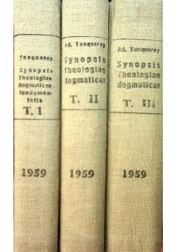 Synopsis Theologiae Dogmaticae Tom od I do III