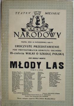 Młody Las  1934 r.