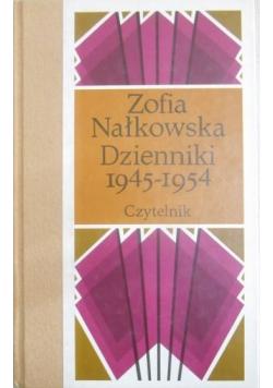 Dzienniki VI 1945 1954 część 2