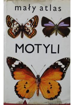 Mały atlas motyli