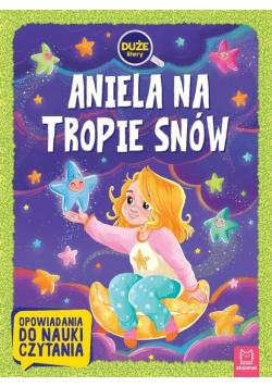 Aniela na tropie snów. Opowiadania do nauki czyt.