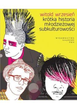 Krótka historia młodzieżowej subkulturowości