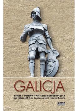 Galicja. Studia z dziejów społeczno-gospodarczych