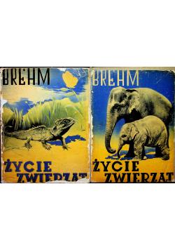 Życie zwierząt 2 tomy ok 1935 r.
