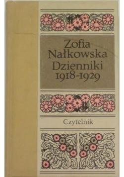 Dzienniki 1918 - 1929