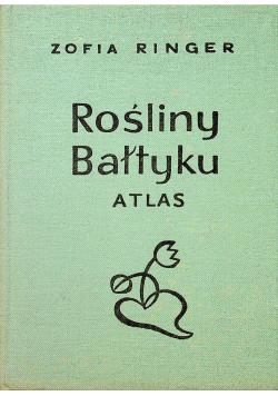 Rośliny Bałtyku