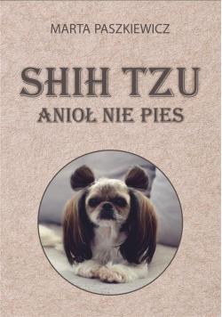 Shih tzu - anioł nie pies