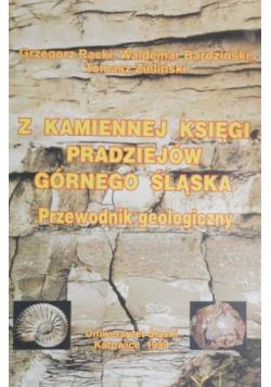 Z kamiennej księgi pradziejów Górnego Śląska