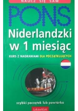 Pons Niderlandzki w 1 miesiąc