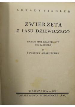 Zwierzęta z lasu dziewiczego 1938 r.