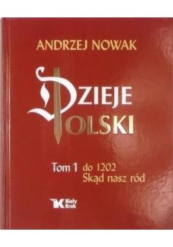 Dzieje Polski  Tom I