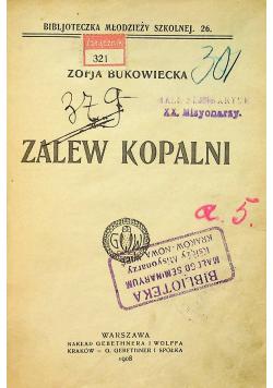 Zalew Kopalni 1908 r.