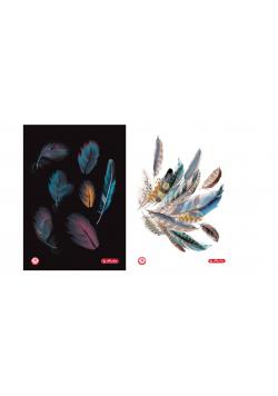 Brulion A5/96K kratka Feathers (5szt)