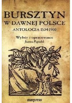 Bursztyn w dawnej Polsce Antologia 1534-1900
