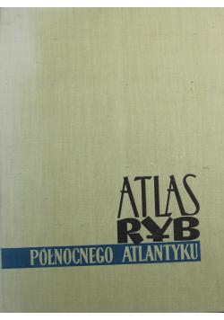 Atlas ryb północnego Atlantyku