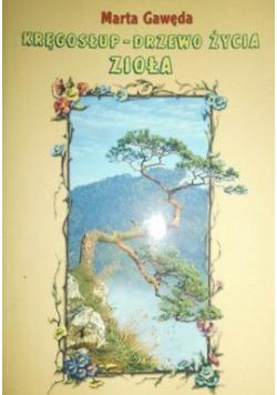 Kręgosłup Drzewo życia Zioła