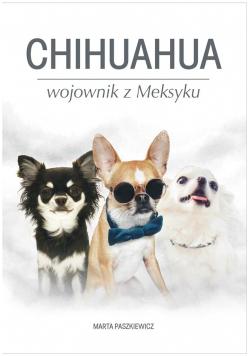 Chihuahua wojownik z Meksyku