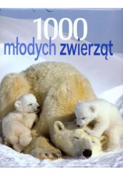 1000 młodych zwierząt