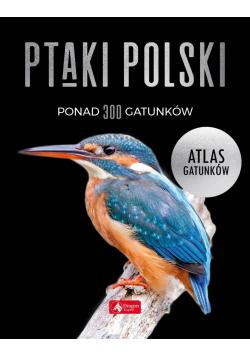 Ptaki Polski. Atlas gatunków