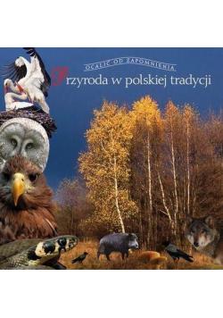 Przyroda w polskiej tradycji