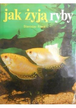 Jak żyją ryby
