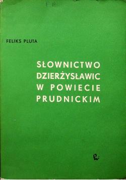 Słownictwo Dzierżysławic w powiecie prudnickim