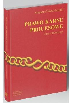 Prawo karne procesowe. Zarys instytucji