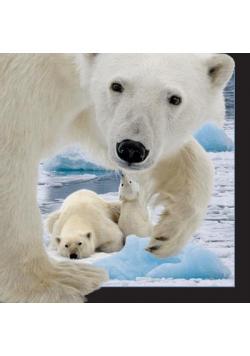 Pocztówka 3D Niedźwiedź polarny z młodym