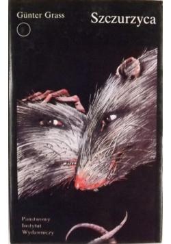 Szczurzyca