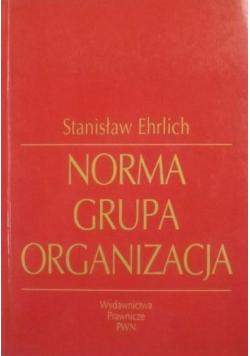 Norma grupa organizacja