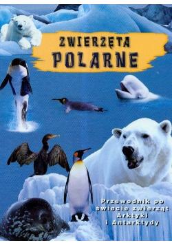Zwierzęta polarne
