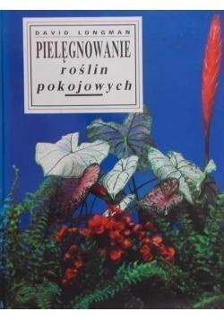 Pielęgnowanie roślin pokojowych