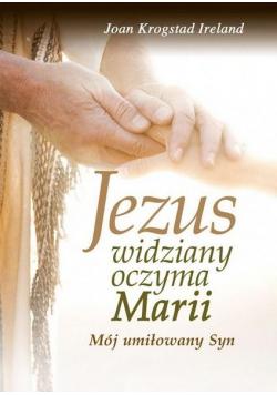Jezus widziany oczyma Marii