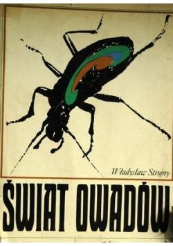 Świat owadów