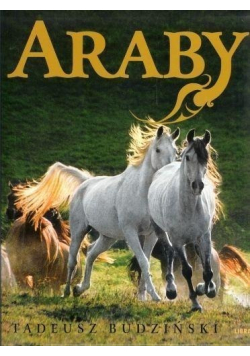 Araby Dzieci Wiatru