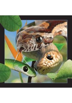 Pocztówka 3D Wąż