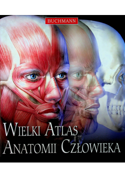 Wielki atlas anatomii człowieka