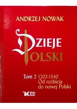 Dzieje Polski tom II 1202 1340 Od rozbicia do nowej Polski