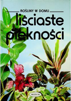 Rośliny w domu Liściaste piękności