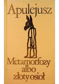 Metamorfozy albo złoty osioł